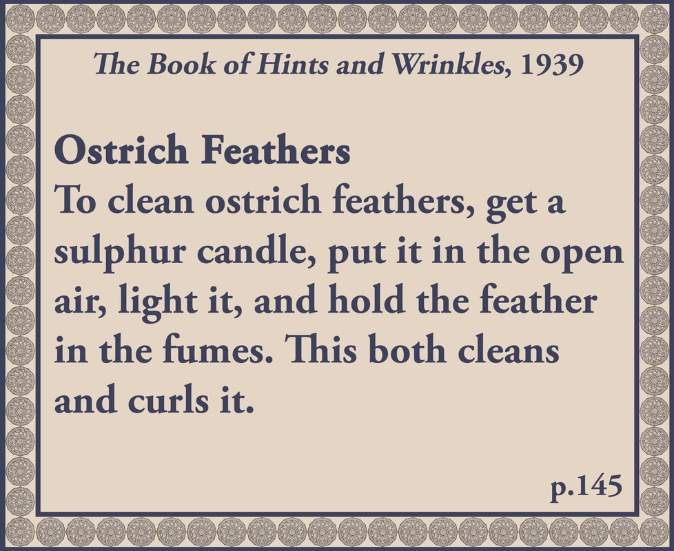 The Book of Hints and Wrinkles advice on caring for ostrich feathers